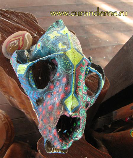 магический череп ягуара
