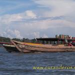 Вперед по Амазонке